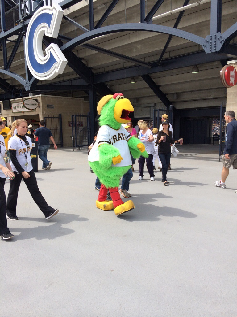 Pirate Parrot on the Riverwalk